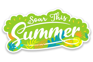 Make summer a season of achieved goals